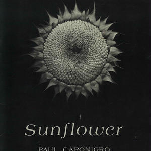 Sunflower / Paul Caponigro (SIGNED COPY)