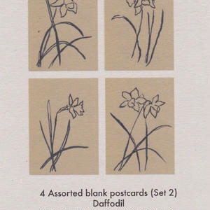 4 Assorted blank postcards (set 2) / Lucy Auge