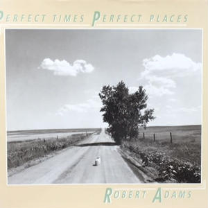 PERFECT TIMES PERFECT PLACES / ROBERT ADAMS