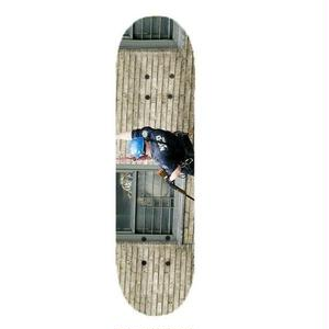 Public Housing Skate Team【パブリックハウジングスケートチーム 】TIGER IN PROJECTS  DECK デッキ 板 8.25インチ