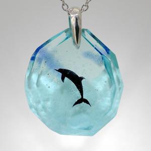 ハンドウイルカ(dolphin391)