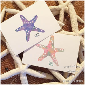 Colorful starfish(ブルー/ピンク)