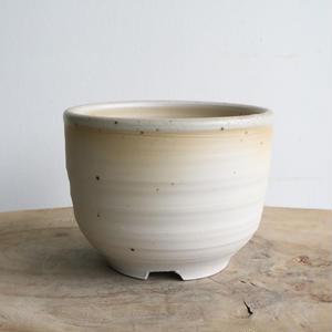和田窯鉢    no.056