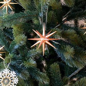 【クリスマス】オーナメントブロンズの星 (大)4個セット