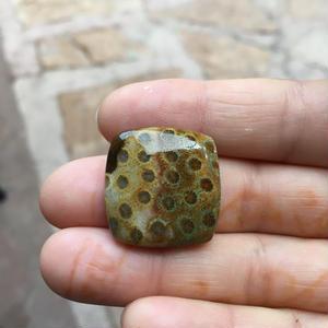 フォッシルコーラル(No.5)/天然石ルース(裸石)
