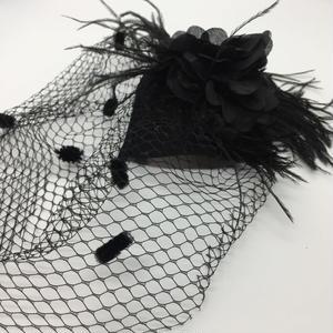 Feather&Birdcage  Veil