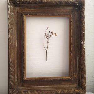 japan vintage  frame