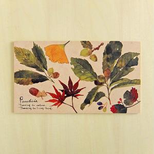イラストボード 秋の木の実