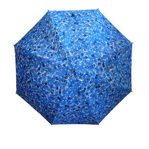 KOROMO ~コロモ~ アオイフルーツ  長傘