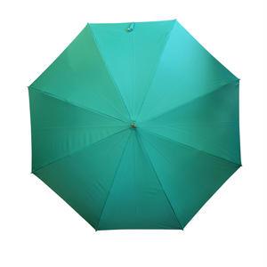 KOROMO ~コロモ~ グリーンの雨傘  長傘