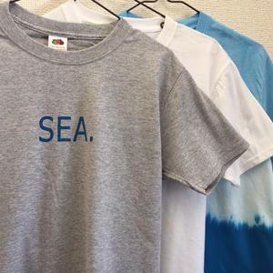 """DANA SPORTS ''SEA"""" Tシャツ Gray/White"""
