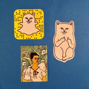 猫 ねこ 3枚セット ステッカー シール cat sticker ①