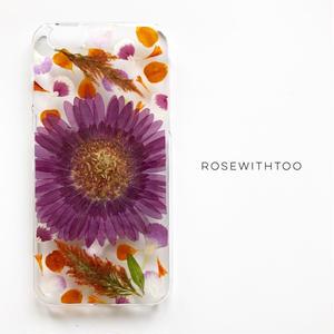 押し花iPhoneケース 0730_5 purple gerbera