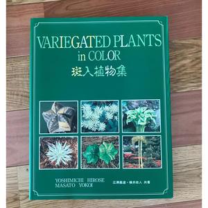 斑入植物集
