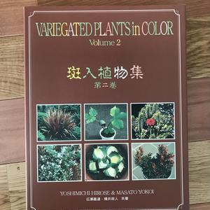 斑入植物集  第2巻