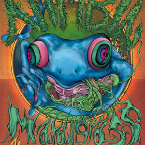 Nimbin Mardigrass 2015 OFFICIAL POSTER (A3)