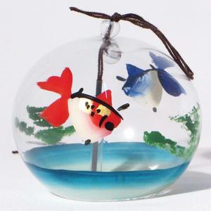 小丸 赤青二色金魚