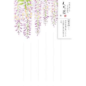 HK104旬花 はがき 藤