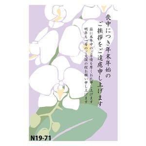 FSM喪中はがきN19-71(胡蝶蘭)