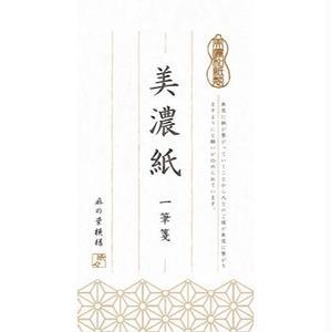 LI154 美濃紙 一筆箋 麻の葉模様 純白