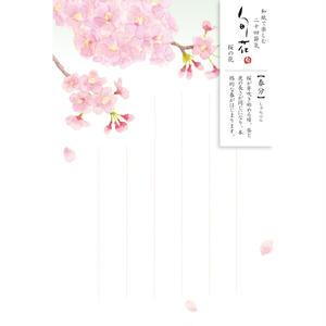 HK102旬花 はがき 桜