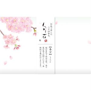 KK139旬花 懐紙 桜