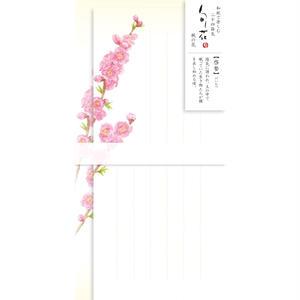 LI250旬花 一筆箋 桃の花