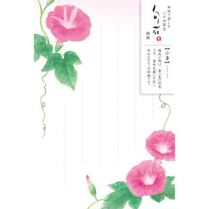 HK109旬花 はがき 朝顔