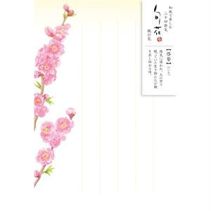HK101旬花 はがき 桃の花