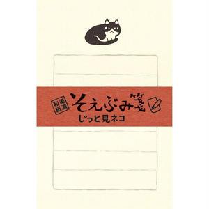 LH243 そえぶみ箋 じっと見ネコ