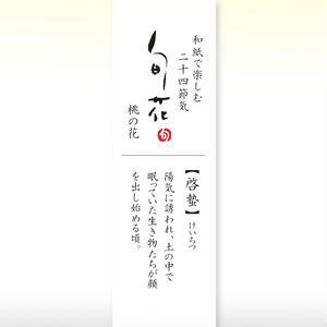 KK138旬花 懐紙 桃の花