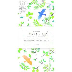 LI243今日のお手紙 小鳥と緑