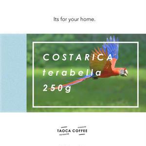 コスタリカ テラ・ベジャ 浅煎り 250g