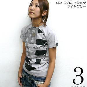 tgw019 - USA スカル Tシャツ ( ライトグレー ) - The Ghost Writer -G- ( パンク ロックTシャツ SKULL ドクロ アメリカ 灰色 半袖 )
