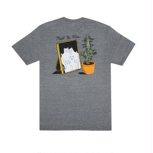RIPNDIP | Family Reunion Tee (Ash Grey)