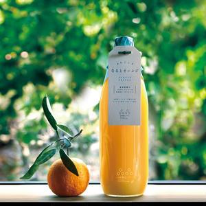なるとオレンジ果実セット