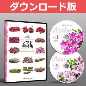 vol.01ツツジ素材集 [ダウンロード版] 5a23