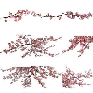 桜 切り抜き素材セット  - Cherry Blossoms   sa_016