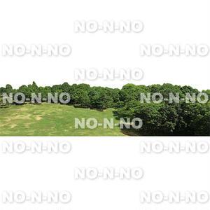 鳥瞰樹木 - BirdEye 2b010  背景樹木