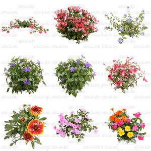 花の切り抜き素材 9個セット F_013