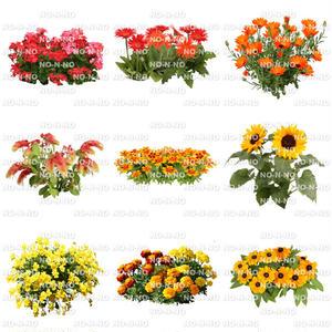 花の切り抜き素材 9個セット F_006