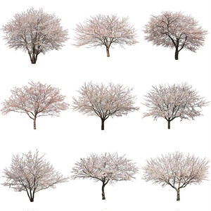 桜 切り抜き素材セット  - Cherry Blossoms   sa_007