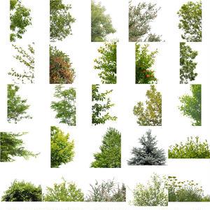 無料-前景樹木素材セット 75個 free_zenkei_set03