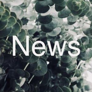アン・シャノアールNews