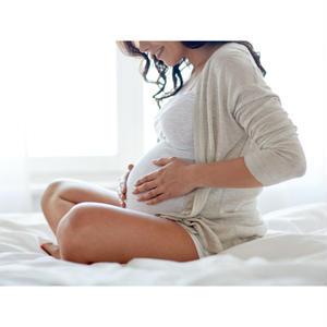 精力剤アフィリエイト「妊活に効果的な精力剤とは?」記事テンプレート(1000文字)