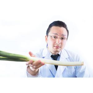 精力剤アフィリエイト「早漏改善に効果的なサプリランキング」記事テンプレート(ブログ・ペラサイト兼用/2500文字)