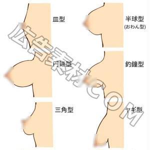 「バストの形一覧の図解」JPG画像素材