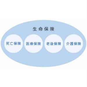 【記事販売】生命保険の種類を専門的に解説している記事(19000文字)