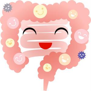 男性向け「腸内環境改善サプリランキング」記事テンプレート!(ブログ・ペラサイト兼用/3900文字)