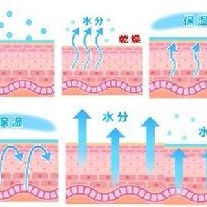 乾燥肌の原因と保湿図解6枚セットパック!